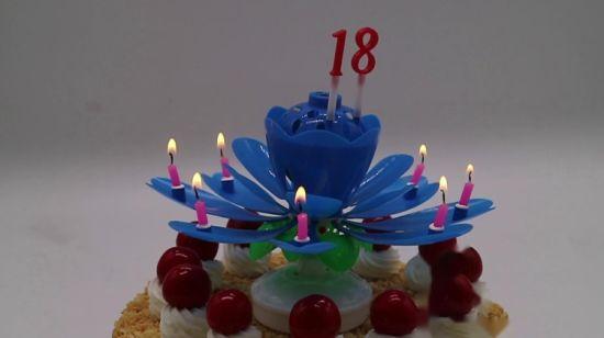 China Good Price Sparkling Happy Flower Music Birthday Cake Candle
