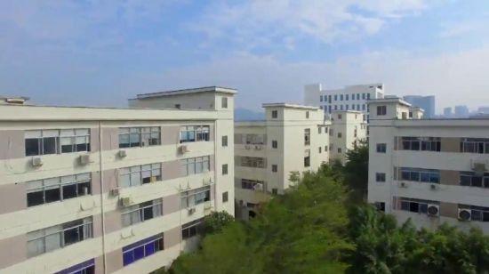 China IXPE Insulation Foam for Atomotive Door - China
