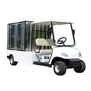 Ce Approved Utility Golf Cart, Motorized Utility Vehicles with Cargo Box