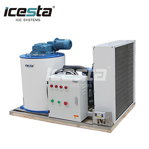 Icesta Beautiful 1000kg Flake Ice Machine for Supermarket