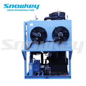 Snowkey Commercial Edible Transparent 1 T/D- 70 T/D Tube Ice Machine