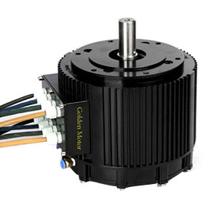 Golden Motor 10kw Electric Brushless DC Motor for Your Boat and Motorcycle