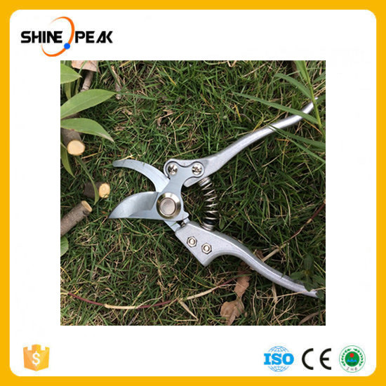 China Grafting Tool High Carbon Steel Fruit Tree Pruning Shears Bonsai Pruners Garden Shears Gardening Secateurs Garden Scissors Hot China Pruners And Tree Pruning Price