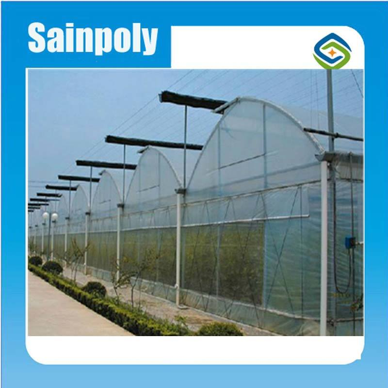 Vegetable Used Plastic-Film Greenhouse for Sale