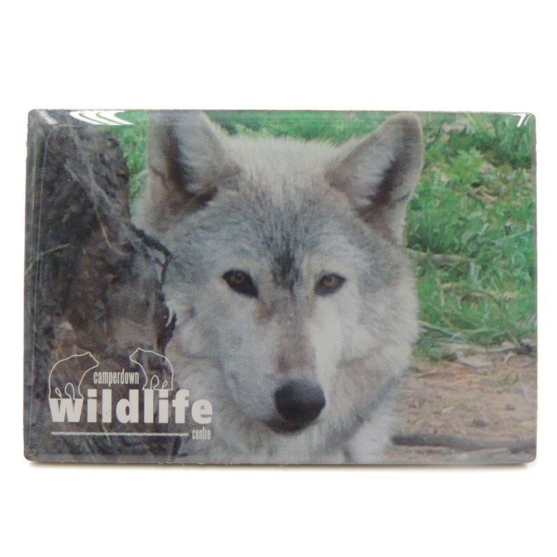 OEM Metal Fridge Magnet with Epoxy for Promotion pictures & photos