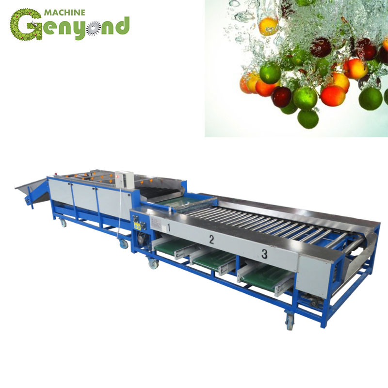Industrial citrus fruit