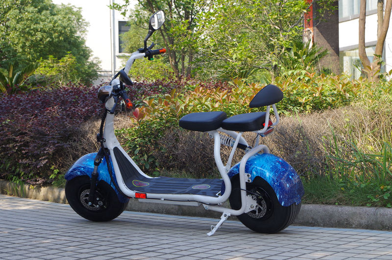 Newest Harley Scrooter Style Electric Scooter Fashion City Scooter Citycoco (JY-ES005)