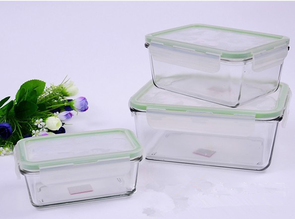 Large Rectangle Lock and Lock Borosilicate/Pyrex Glass Food Containers