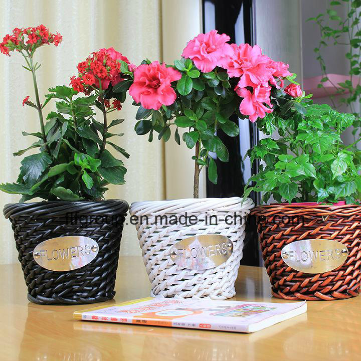 Eco-Friendly Customized Different Colors Willow Flower Vase for Home Decoration pictures & photos