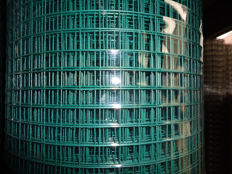 China Galvanized and Reinforced Welded Wire Mesh (Factory & Exporter ...