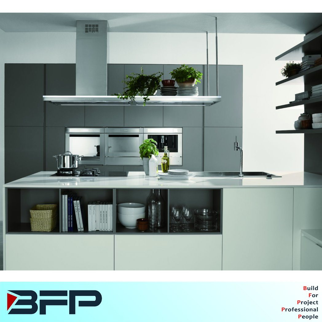 China Elegent Grey Matt Lacquer Kitchen Cabinet for Project Blk-36 ...