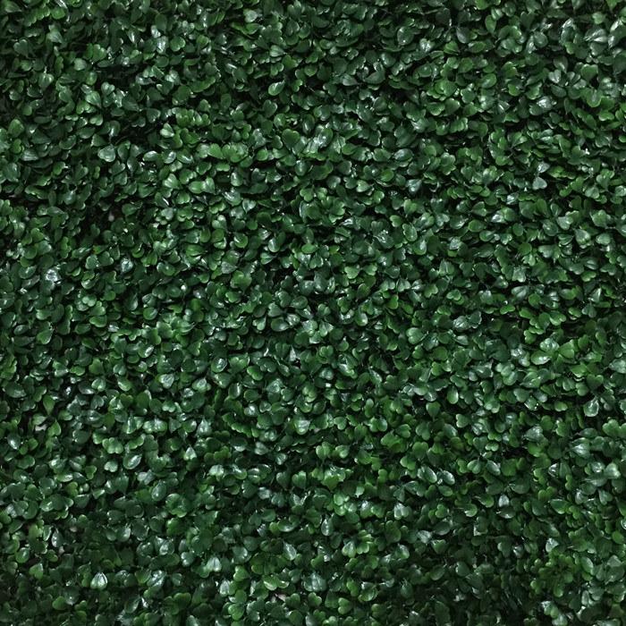 Vertical Garden Texture Garden Inspiration