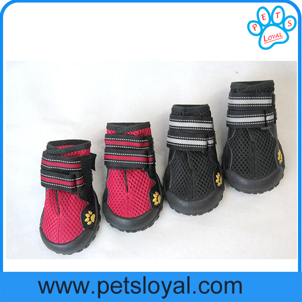 Manufacturer Pet Supply Product Luxury Summer Cool Pet Dog Shoes pictures & photos