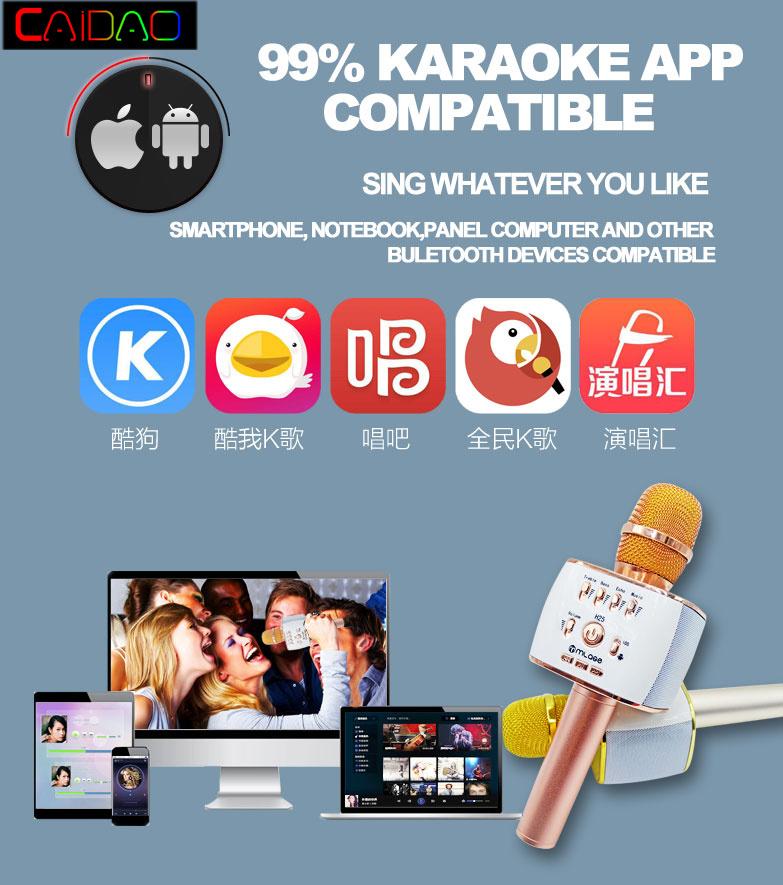 China Karaoke-KTV-Wireless-Bluetooth-Microphone-Speaker