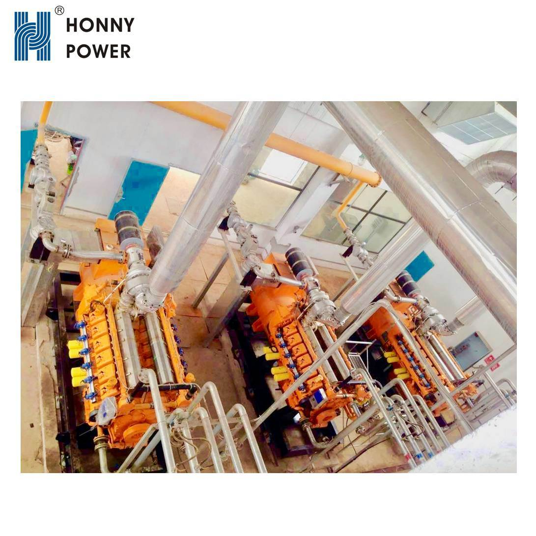 Honny Power 1MW to 50MW Biogas Power Station