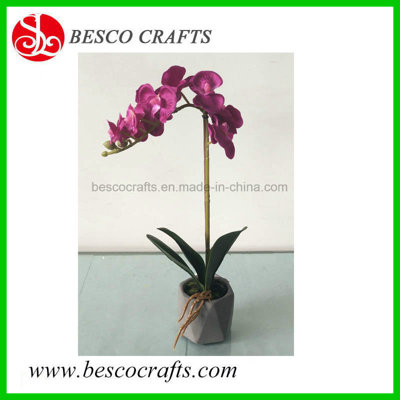 China 33cm High Cymbidium Artificial Flowers Orchid Plant in Cement Pot -  China Synthetic Orchid, Cymbidium