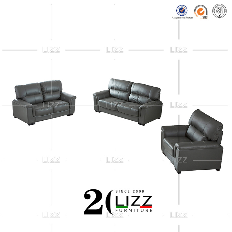 Living Room Genuine Leather Sofa Couch