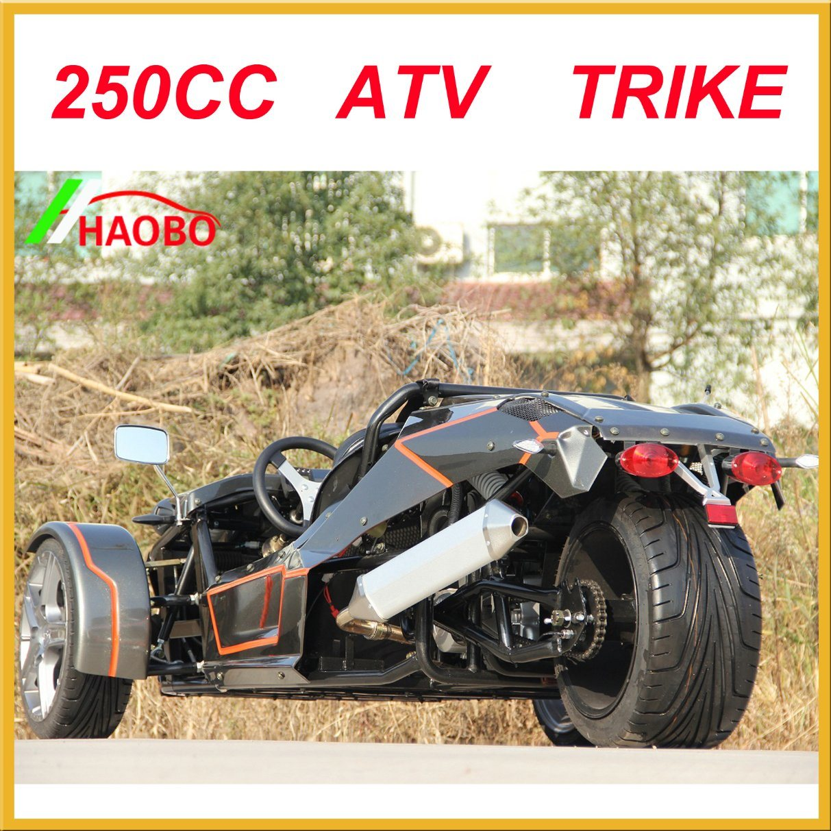 250cc Ztr Roadster with Ec Approved