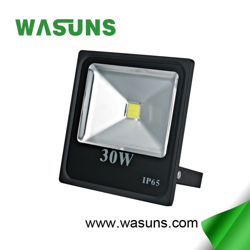 Factory Wholesale Price 30W COB Floodlight LED pictures & photos