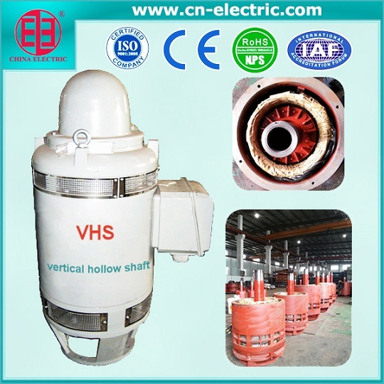 Latest Vhs Series Vertical Hollow Shaft Motor