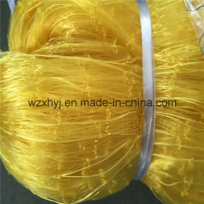 0.21mm*22mmsq*16md*100m Nylon Monofilament Fishing Net pictures & photos