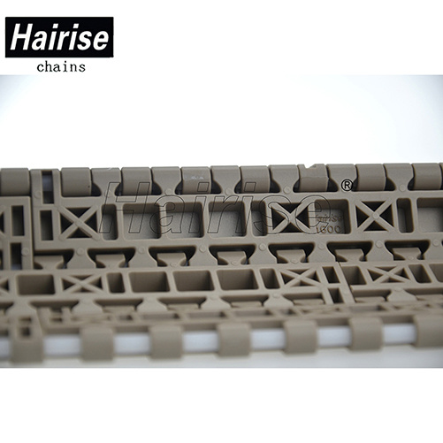 Conveyor Plastic Modular Belt for Food and Beverage (Har1600FT) pictures & photos