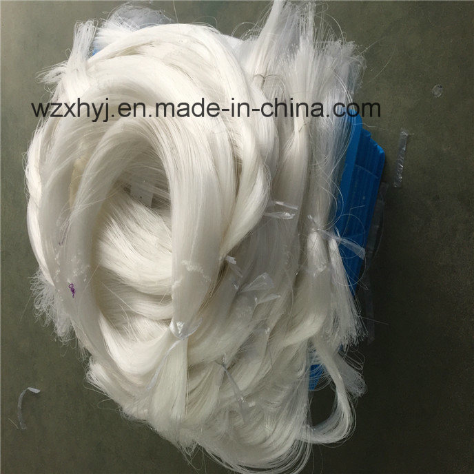0.65mm X 304.8mm X 8.5MD X 305m Nylon Monofilament Fishing Net pictures & photos