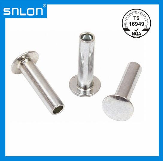 [Hot Item] DIN6791 Semi-Tubular Pan Head Rivet