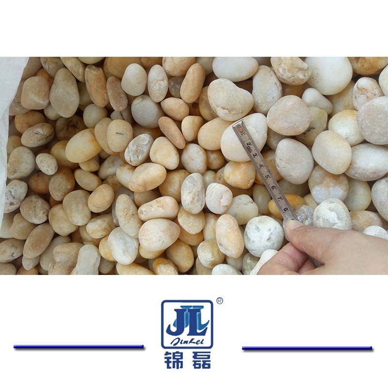 High Quality Natural White Pebble for Landscaping/Paving/Garden Yard/Indoor/Decoration/Outside Flooring/Paving/Lands pictures & photos