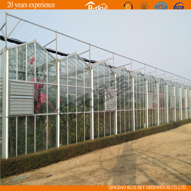 Modern Design Glass Greenhouse for Picking Garden