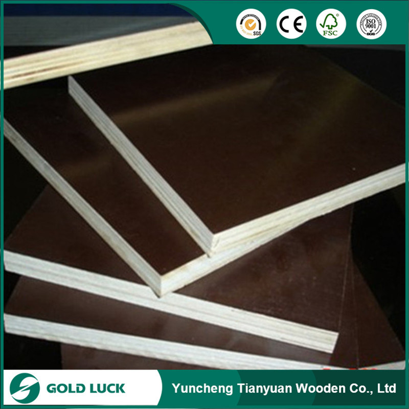 Malaysia Plywood/ Hardwood Plywood/ Film Faced Plywood / Construction Plywood pictures & photos