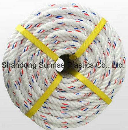 Hot Selling PP Danline Rope 4 Strands with Core