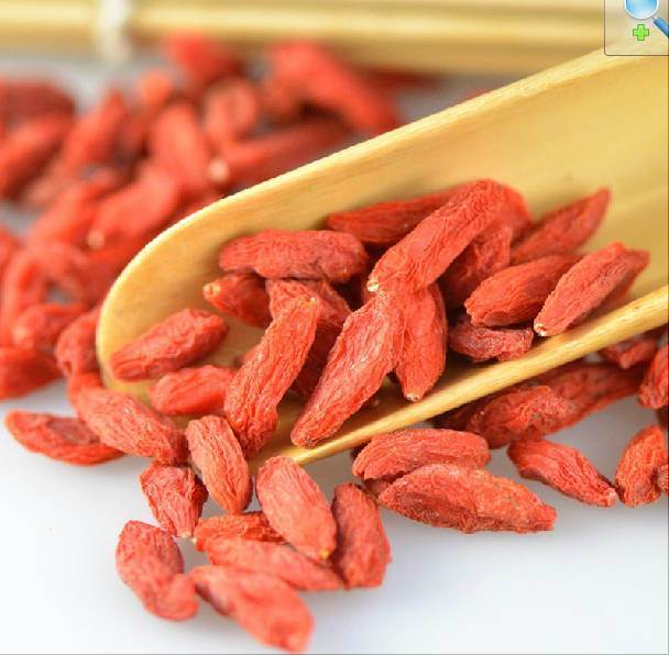 Dried The King of Chiness Wolfberry Organic Goji Berries pictures & photos