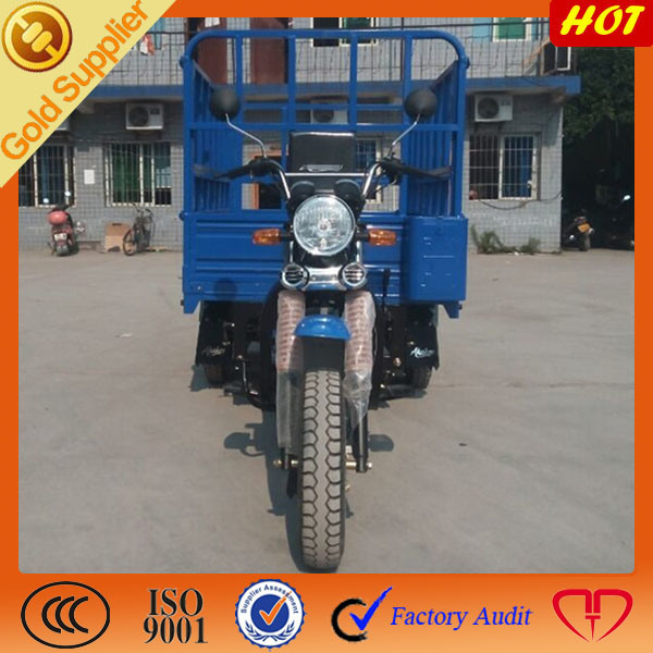 China Manufacture Special Three Wheels Mini Truck pictures & photos