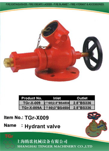 Brass Fire Hydrant Valve: BS336 2-1/2""