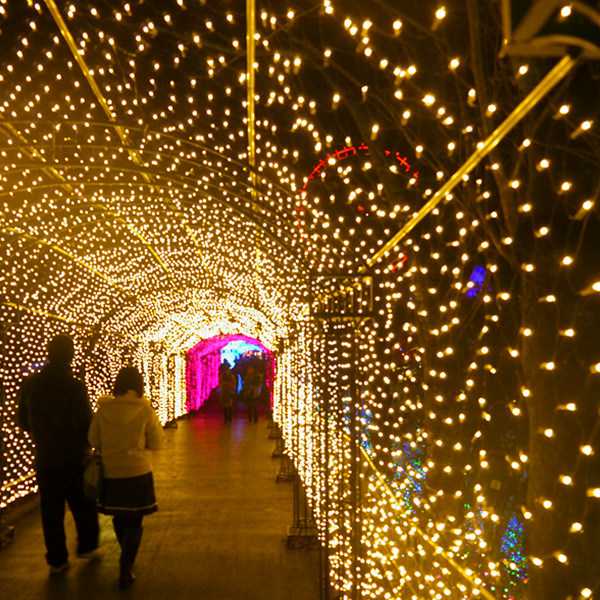 Hot Item Fairy Party Lights Led Net Light Christmas Decoration Lighting Tunnel