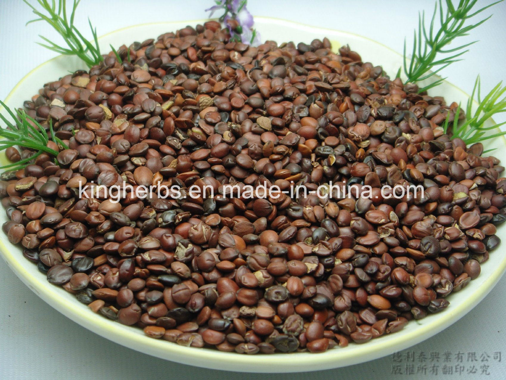 China Spine Date Seed Extract