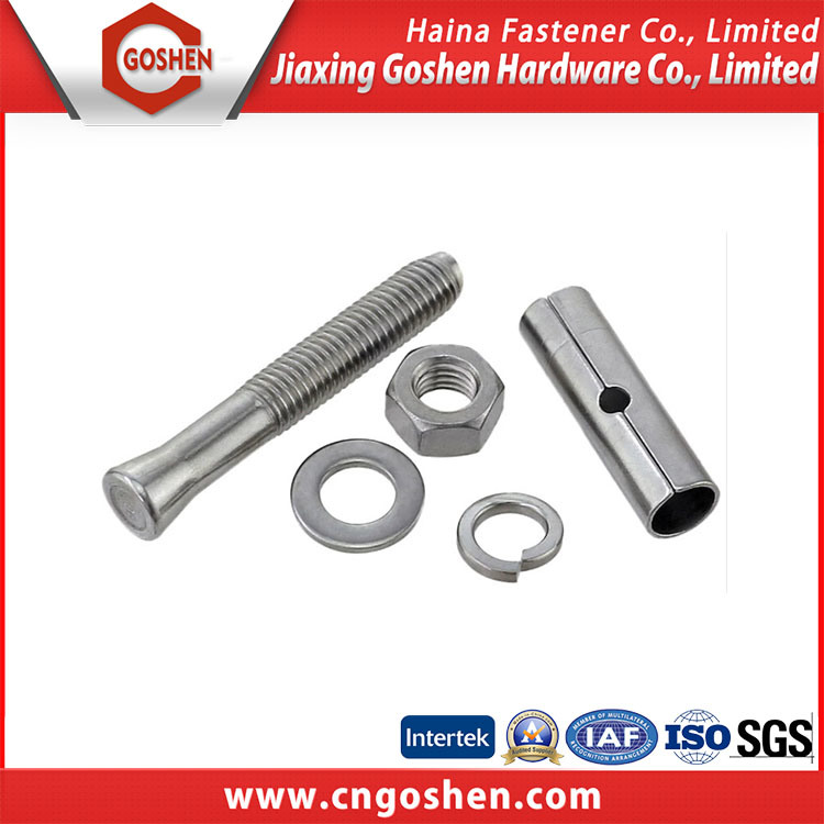 Stainless Steel Wedge Anchor Bolt pictures & photos