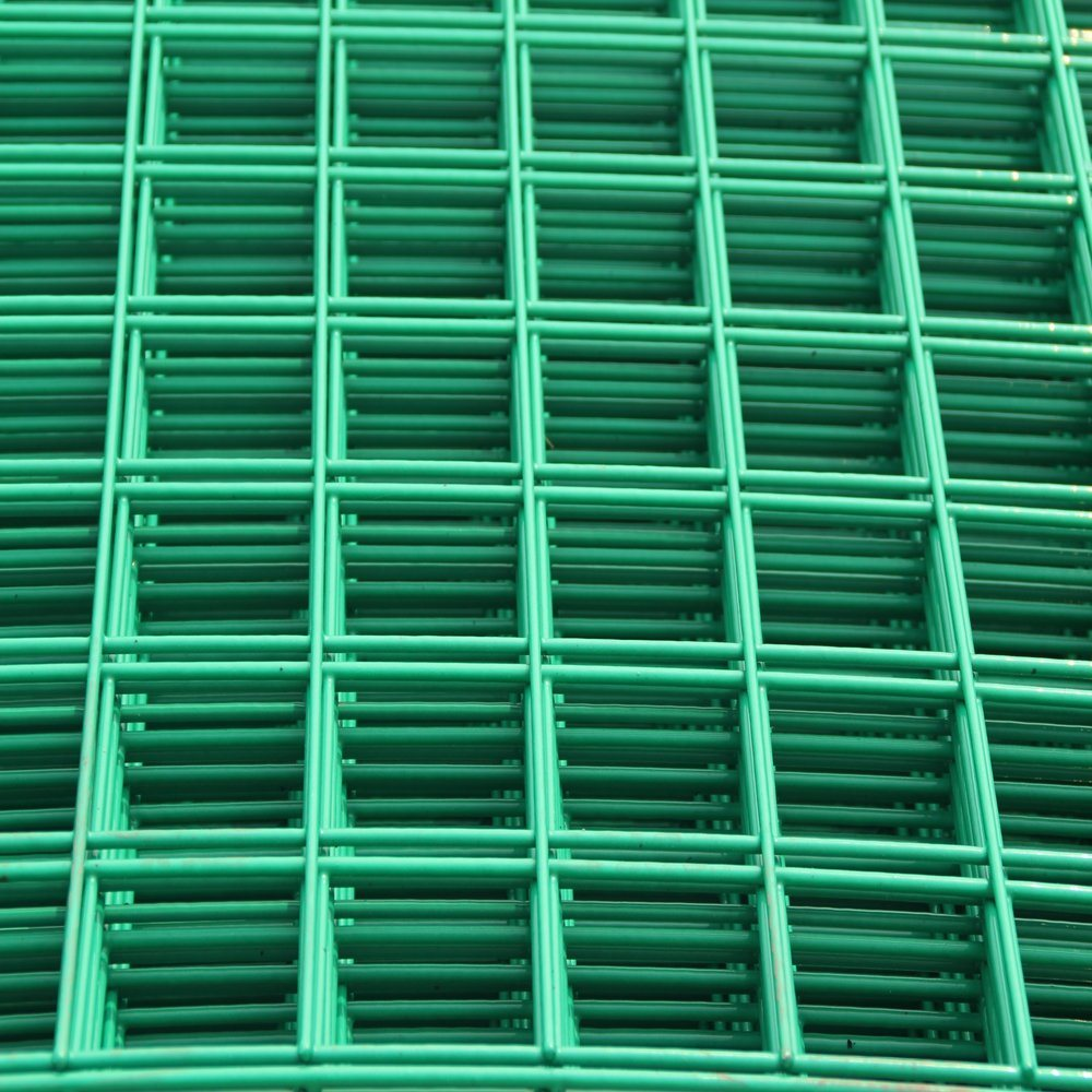 China High Quality Welded Iron Wire Mesh Roll for Bird Cage - China ...