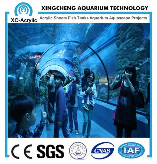 China Aquarium Project Transparent Acrylic Tunnel Supplier - China