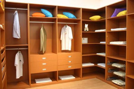 Custom Made Walking Closet (ZH 088)
