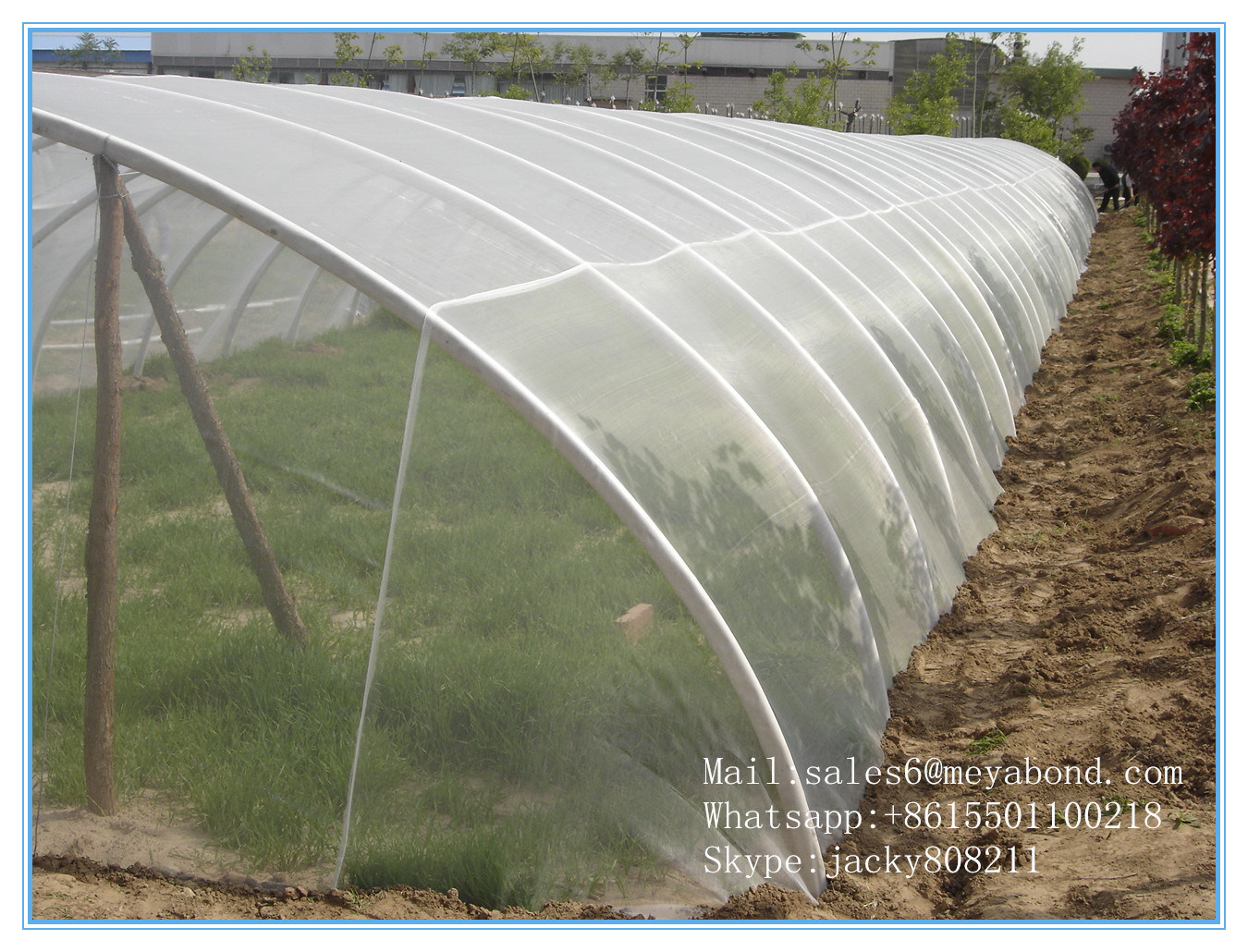 7 Years Top Quality Anti Insect/Aphids. Thrip Mesh