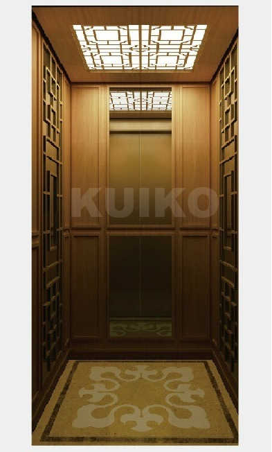 British Style Home Elevator with Good Price pictures & photos