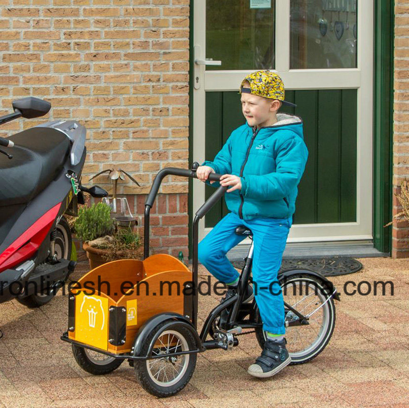 Mini Tricycle for Kids/Kids Cargo Bike/Toddler Cargo Bicycle/Three Wheel Cargo Bike for Kids/3 Wheel Children Trike CE