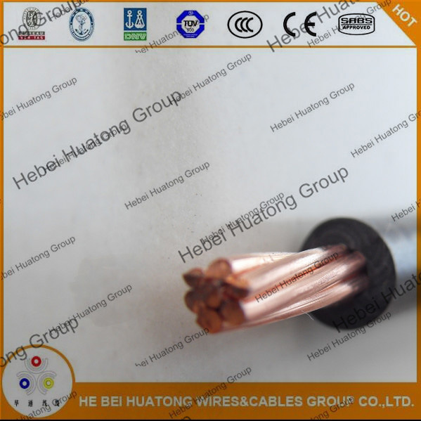 AWG 8 10 12 14 PVC/Nylon Thhn/Thwn Electric Wire pictures & photos