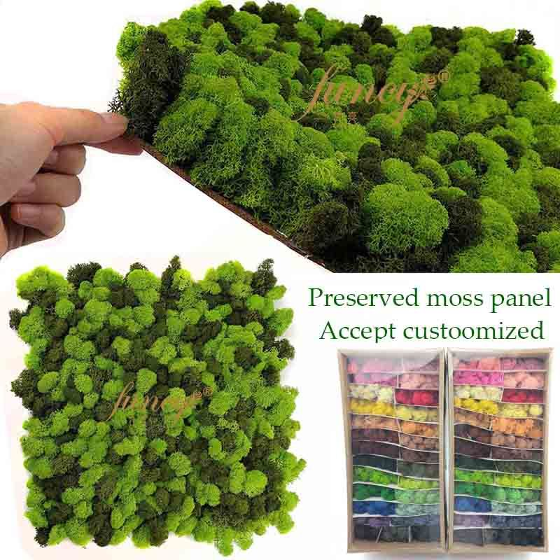 Emotional Interior Reind Reindeer Moss Preserved Frame Air Purification Function Eco-Friendly Design 13 Red Color