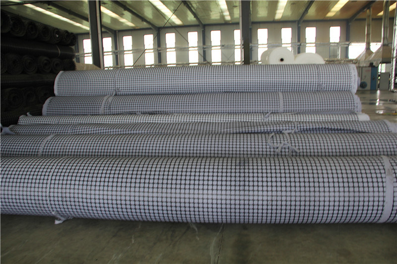 Drain Drainage Sheet Mat for Land Fill with CE pictures & photos