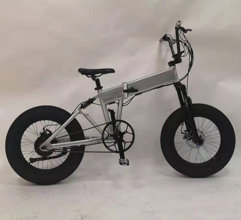 China Fat Tire 1000W 48V Electric Bike, 1000 Watt E Bike - China Electric  Bicycle, E Bike