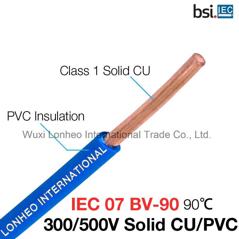 China IEC 07 300/500V Single Core Copper PVC Hook up Wire - China ...