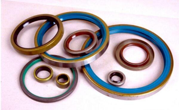 Rubber Seal (s3001)